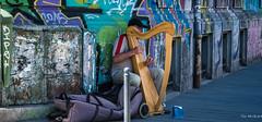 2018 - Romania - Bucharest - Harpist Busker (Ted's photos - Returns 23 Jun) Tags: 2018 bucharest nikon nikond750 nikonfx romania tedmcgrath tedsphotos vignetting wideangle widescreen man male muscian instrument musicalinstrument harp harpist performer busker busking ballcap red redrule grafitti streetscene street bollard plucking strumming playing bucuresti