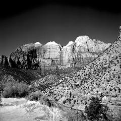 Cliffscape (Scott Holcomb) Tags: zionnationalpark utah hasselblad500c carlzeissplanar128f80mmlens zenzabronicaso56•2cya3filteradapter adoxchs100iifilm 120film 6x6 squareformat epsonperfectionv600 photoshopdigitalization