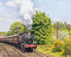 Severn Valley Railway. (Adrian Walker.) Tags: elements train locomotive railway canon80d svr tamron steam smoke sky trees severnvalleyrailway bridgnorth
