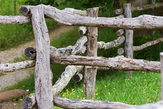 HFF - Happy Fence Friday!