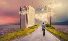 The way (Ro Cafe) Tags: photomanipulation photoshop ps fantasy conceptual book way road hills desert prairie sky clouds birds man