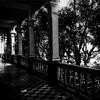 Escuela de Enfermería UCV (@williamsmolin52) Tags: williamsmolin52 monotone monocromático venezuela caracas bnwphotography biancoenero pretoebranco photographyblackandwhite blackandwhite photographienoiretblanc noiretblanc noire