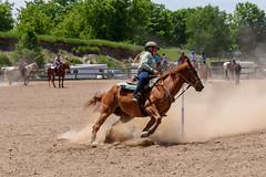 JBC_6249.jpg (Jim Babbage) Tags: krahc bethany appaloosa horses horseshow 2018
