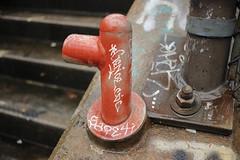 Genoe, Sape, Omek (NJphotograffer) Tags: graffiti graff new jersey nj bumtrail riverwalk geno genoe cdc crew sape4 sape 4 2wcrew 2w omek ogc