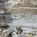 Dolostone (Cumberland Formation, Upper Ordovician; Burkesville West Rt. 90 roadcut, Kentucky, USA) 2