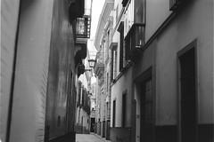 Sevilla (davidgarciadorado) Tags: sevilla spain santacruz street balcony evenig ilford delta 35mm 135 film blackandwhite ngc kiev helios103