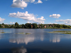 lake (vinnserg 18) Tags: nature ukraine water lake landscape relaxation sky image lily canon powershot a4000is outdoor riverbank watersurface cloud shore tree wood forest park