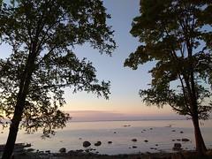 Alexandria. (presteza777) Tags: sky clouds nuages nubes nuvole coucherdusoleil tramonto sunset trees sea seascape golfedefinlande petergof stpeterburg russia sun