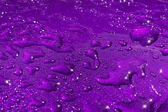 Rain Drops (2) (andycurrey2) Tags: smileonsaturday preciouspurple paint colour water rain abstract art drops