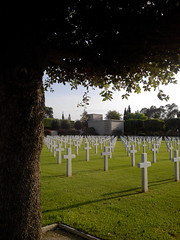 Cross x Angles (marco_albcs) Tags: tunisia tunisie cemitério cemetery americanwar war american usa us northafrica áfrica
