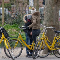 Yellow Bike (Digifred.nl) Tags: digifred 2018 nikond500 amsterdam nederland netherlands holland iamsterdam vondelpark straat street city grachten streetphotography toeristen tourists candid girl meisje cycling bicycle bike yellow
