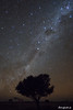 Southern Sky Tree (astrofan80) Tags: alphacen astronomie baum carinanebula crux kohlensack milchstrase norma sternhimmel sternwarte südhimmel tivoli