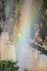 Australia_2018-135.jpg (emmachachere) Tags: subtropical trees hike waterfall boatride springbrook australia rainforest kanagroo animals koala brisbane boat lonepinekoalasanctuary