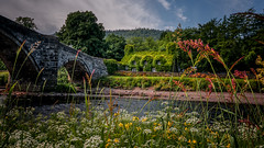 The Riverbank ... (Einir Wyn Leigh) Tags: landscape cottage foliage summer joy sunshine june flowers flora bridge wales colorful