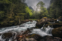 Feeling the Mood (Manuel.Martin_72) Tags: glarus swissalps switzerland drama fairytale foggy lightdrama magic mysterious forest grass green leaves moss mountains rocks stones trees valley woods cascade river water waterfall clouds cloudy fog glow overcast rainy wbpa ch