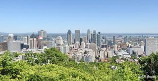 DOWNTOWN MONTREAL  | LEONARD COHEN MURAL |  BELVEDERE KONDIARONK BELVEDERE  |  MOUNT ROYAL  PARK |  MONTREAL   |   QUEBEC  |  CANADA