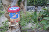 Happy Time (Arne Kuilman) Tags: philippines sigma d7000 1770 holiday filipijnnen cookies bucket sandwich