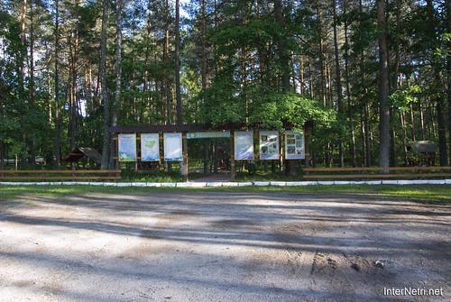 Шацький Національний Природний Парк Озеро Луки Перемут InterNetri  Ukraine 14