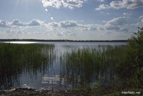 Шацький Національний Природний Парк Озеро Луки Перемут InterNetri  Ukraine 04