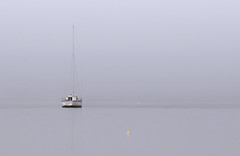 "The derelict ""Sea King"" on a foggy morning. (Jill Bazeley) Tags: derelict vessel sail boat sailboat fog foggy yacht intracoastal waterway palm shores melbourne merritt island brevard county space coast crab trap buoy marker mast nikon 70300mm water sky sea ocean negative minimal minimalist minimalism buoyant"