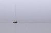 "The derelict ""Sea King"" on a foggy morning. (Jill Bazeley) Tags: derelict vessel sail boat sailboat fog foggy yacht intracoastal waterway palm shores melbourne merritt island brevard county space coast crab trap buoy marker mast nikon 70300mm water sky sea ocean negative minimal minimalist minimalism buoyant"