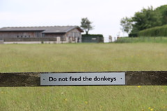 Do Not Feed the Donkeys (Luna-Woona Moon) Tags: donkeys rescue animals equine devon england