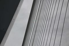 HCS_0008_Rotterdam Erasmusbrug_01