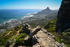 South Africa | Lion's Head from Table Mountain (Nicholas Olesen Photography) Tags: south africa cape town table mountain hiking outdoors lions head camps bay water ocean beach travel nikon d7100 horizontal rock nature landscape