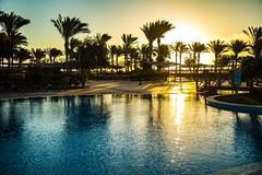 let's start (werner boehm *) Tags: wernerboehm sunrise pool palms sonnenaufgang