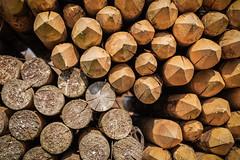 wooden poles #2 (Stefan A. Schmidt) Tags: emmelsbüllhorsbüll schleswigholstein deutschland de holzphal holzphähle holz textur