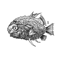 Scary black fish (kicuno) Tags: tattoo fish design art isolated style drawing graphic illustration shirt background white black print character mechanical fantastic carp steampunk painting skeleton hand sea metal fantasy science poster gothic death drawn steam dead monster monochrome engraving skull ink scary aquatic freshwater marine artwork underwater ocean fauna predator fin wildlife nature animal