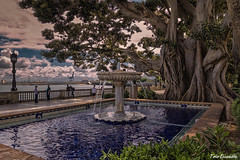 Alameda  Apodaca, Cádiz (ton21lakers) Tags: alamedaapodaca cádiz españa andalucia arbol ficus jardin fuente mar farola verde agua toño escandon canon tamron
