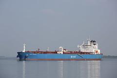 NORD LARKSPUR (angelo vlassenrood) Tags: ship vessel nederland netherlands photo shoot shot photoshot picture westerschelde boot schip canon angelo walsoorden nordlarkspur tanker
