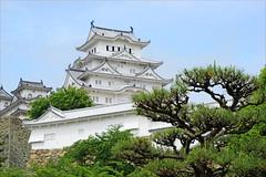 Le Château d'Himeji (Japon) (dalbera) Tags: dalbera japon himeji château chateaujaponais muromachi japonmédiéval jardin jardinjaponais