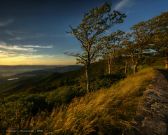 Stony Man Overlook Sunset (HarrySchue) Tags: mountains nationalparks nature shenandoahnationalpark sunset nikon d800e nikor trees grass valley landscape clouds shenandoahmountains shenandoahvalley stonyman
