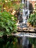 Picnic Point Waterfall (annewilson12) Tags: waterfalls picnicpoint toowoomba manmade landscape landscapephotography