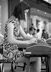 Plucking (Tim Roper) Tags: 50mm paloalto summicron film hc110 hp5 lecia music street chinese tradistional guzheng instrument strings
