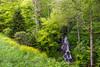 Blue Ridge Parkway Waterfall (Jon Ariel) Tags: blueridgeparkway waterfall northcarolina nc spring water forest smokymountains mountains
