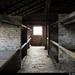 20170630_30 Sleeping platforms & window | Auschwitz concentration camp, Poland