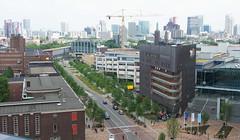20180525-023 Rotterdam Erasmus MC (SeimenBurum) Tags: rotterdam netherlands erasmus erasmusmc hospital ziekenhuis architecture architectuur garden roofgarden daktuin tuin