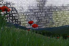 Give Thanks- Memorial Day (Karen McQuilkin) Tags: memorialdaygivethanks inmemory flandersfield vietnammemorial blackgranitewall tribute thankyou poppies