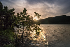 With windy sunset (tetsuyakatayama) Tags: sunset sky cloud lake nature landscape tree sea seascape water unzen nagasaki japan