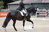 _MG_7851 (dreiwn) Tags: dressage dressur dressuur pferd reitturnier turnierreiten pferdesport horse horseback horseriding equestrian reitverein dressurprüfung kandare doublebridle reiten pferde reitplatz ridingarena