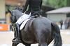 _MG_7910 (dreiwn) Tags: dressage dressur dressuur pferd reitturnier turnierreiten pferdesport horse horseback horseriding equestrian reitverein dressurprüfung kandare doublebridle reiten pferde reitplatz ridingarena