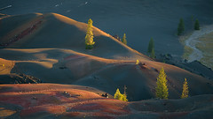 Last Dance (Bob Bowman Photography) Tags: light volcanic trees color metamorphic sunset california lassen nationalpark