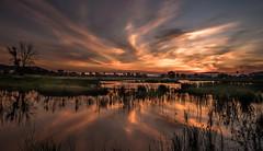 Reflection (joboss83) Tags: sunrise fuji france provence landscape paysage brume sun soleil lac nature sauvage flickr var réflexion reflection orange sunshine groupenuagesetciel