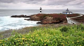 Primavera en Isla Pancha.