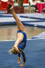 132A1708 (Knox Triathlon Dude) Tags: gym gymnastics 2016 leotard female ncaa college airforce tn usa sports varsity woman women レオタード leotardo леотард женская гимнастка