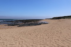 St Combs Beach_may 18_634 (Alan Longmuir.) Tags: stcombsbeach grampian aberdeenshire stcombs