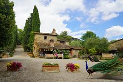 Bauernghof La Vialla in Castiglion Fibocci - Toscana / Italien (Mariandl48) Tags: bauernhof italien haus tiere pfau blumen landschaft bäume